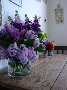 Still waiting for this years Lilacs