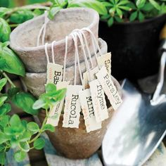 Small-Space Gardening—Tips for growing more food in less space!