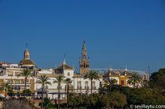 Vista de la Real Maestranza y la Giralda. A view of Real Maestranza bullring and Giralda Tower, Seville