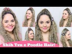 Penteados Estilo Pets/Dogs: Shih Tzu e Poodle Hair (Homenagem as Minhas ...