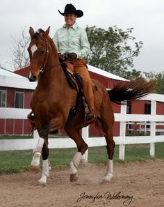 Western Dressage - would love to do this with my gelding, Cody!