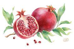 pomegranate patterns by Natalia Tyulkina, via Behance #watercolor #illustration