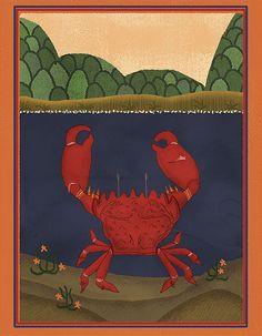 Crab #zodiac #astrology #cancer #crab