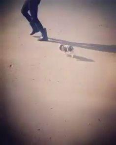 Running on the beach http://ift.tt/2kfooiH
