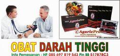 Obat Darah Tinggi Herbal Tradisional Alami http://www.agaric-pro.com/2015/02/obat-darah-tinggi-herbal-tradisional-alami.html