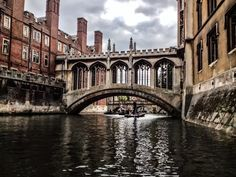 oxford university archways - Google Search Sydney Harbour Bridge, Arches, Oxford, University, Google Search, Travel, Bows, Viajes, Traveling