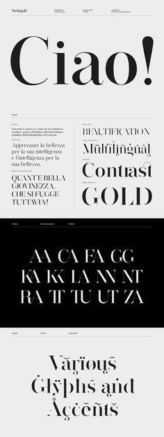Seingalt Free Font - elgant serif font suitable for headlines Logo Fonts Free, Free Typeface, Font Free, Best Free Fonts, Serif Typeface, Modern Serif Fonts, Sans Serif Fonts, Free Modern Fonts, Best Serif Fonts