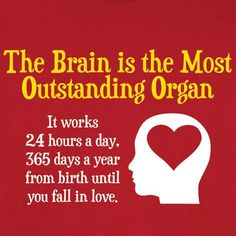 The Brain Is The Most Outstanding Organ.  It works 24 hours a day, 365 days a year from birth until you fall in love.