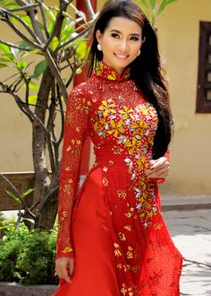 Beautiful Ao Dai Vietnam