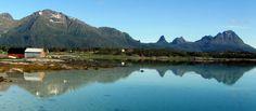 Vollan: 29.06.2014 Ness tidlig morgen-Gartneriet på Storjo...