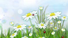 Download Wallpaper ID 1501149 - Desktop Nexus Nature