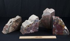 THIS STUNNING LOT OF FOUR LARGE PIECES OF PETRIFIED WOOD WILL ADD NATURAL BEAUTY TO ANY HOME. THEY COULD BE USED AS BOOKENDS OR STAND ON THEIR OWN. ONE OF THE PIECES IS MARKED ARIZONA PETRIFIED WOOD. THE 4 PIECES ALL AVERAGE AROUND 7 IN W. AND 5 IN. H.