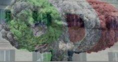 In diretta consiliare laut aut a Chieco  Abbiamo più volte parlato della faglia che spacca il Pd e degli esiti a cui avrebbe portato. Puntualmente confermati come al solito.  Quella spaccatura è venuta fuori in maniera plateale ieri in Consiglio comunale dove il sindaco Pasquale Chieco è stato praticamente sfiduciato in diretta.  Protagonista la stessa ala del Pd che aveva già più volte dato prova di sé con varie iniziative contro il chiechismo dellamministrazione: indimenticabile quella…