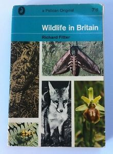 Vintage Pelican paperback book #A401: Richard Fitter - Wildlife in Britain