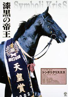 シンボリクリスエス Symboli Kris S (USA) 1999 Blk/br.h. (Kris S (USA)-Tee Kay (USA) by Gold Meridian (USA) Horse of the Year (2002 & 2003), Best Older Horse (2003), Best 3YO Colt (2002) Winner of the Arima Kinen (G1;2002&2003), Tenno Sho Autumn (G1;2002&2003), Aoba Sho (G2;2002), Kobe Shimbun Hai (G2;2002)