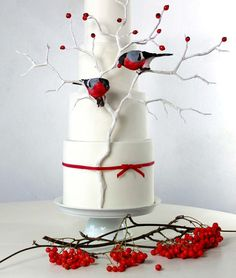 Holiday Wedding Birds Perhaps you know the cake already, as it was in the advertisment for the magazine, but I would still like to show it. Gorgeous Cakes, Pretty Cakes, Amazing Cakes, Cake Central, Bird Cakes, Cupcake Cakes, Cupcakes, Cupcake Ideas, Winter Torte