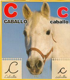 Material educativo para maestros: Abecedario con imagenes reales Horses, Animals, Board, Index Cards, School, Animais, Animales, Animaux, Horse