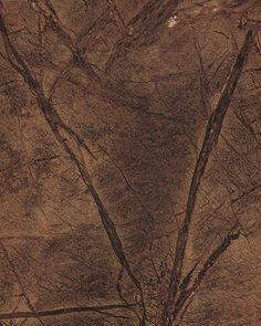 Rainforest Brown (3477) available at Castle Rock Countertops. http://castlerockcountertops.net/