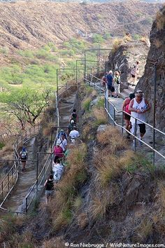 Visitors hiking up the trail to the top of Diamond Head Crater, Honolulu, Oahu, Hawaii