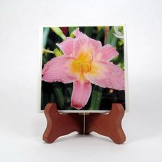 Handmade Photo Coaster Lily Pink and Yellow 0070 by PhotographyByRoger on Etsy