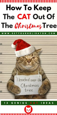 How To Keep The Cat Out of The Christmas Tree | 13 Ways #cat #pets #diychristmas #cats