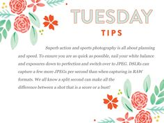 It's a new month of Tuesday Tips!  Since September usually means the start of football season, we are tackling some great tips to ensure you capture Sports Illustrated worthyshots!  http://www.everythingbloom.com/tuesday-tips-174-%C2%B7-lights-camera-action