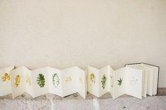 """CalleMuseo 3   Taller """"Escrituras vegetales"""" por José Carlos Sanz   NEX…"""