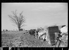 Evicted sharecroppers along Highway 60, New Madrid County, Missouri