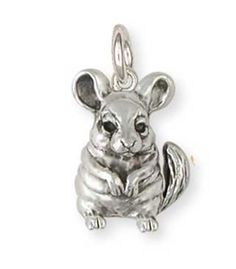 Chinchilla Charm Jewelry -- You can find out more details at the link of the image.(This is an Amazon affiliate link and I receive a commission for the sales) #CharmsandCharmBracelets