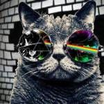 Even cats love Pink Floyd Musica Punk, Pink Floyd Art, Estilo Rock, Classic Rock, Rock Music, Dj Music, Music Is Life, Rock Art, Illustrations