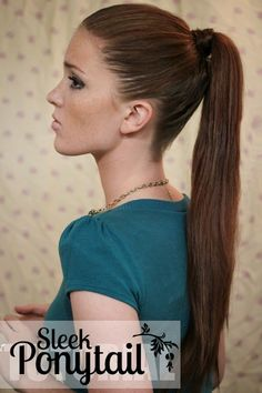 The Freckled Fox :The Sleek Ponytail