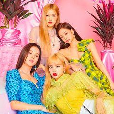 Kpop Girl Groups, Korean Girl Groups, Kpop Girls, Divas, Memes Do Blackpink, Top Kpop, Black Pink Kpop, Blackpink Members, Blackpink Photos