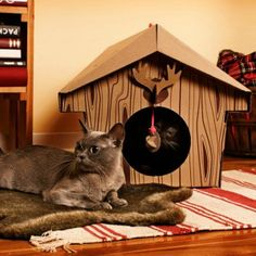 *Canadian Cabin Cat House* Inspired by the Canadian-style hunting chalets, the Canadian Cabin Cat House can be your feline friend's fun abode. The theme is pretty humoristic which might make your kitty feel more like a star among her own friend circle. Crazy Cat Lady, Crazy Cats, Gifts For Pet Lovers, Cat Lovers, Pet Gifts, Cool Cats, Unique Animals, Cute Animals, Canadian Cat