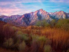 # Mountains Reeds Grass