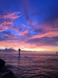 South Jetty, Venice Florida   Photo by: Rose-A-Lynn Shipley