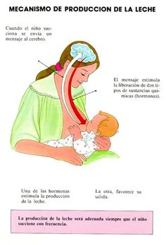 http://www.babysitio.com/#  lactancia materna