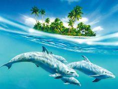 Golfinhos debaixo de água