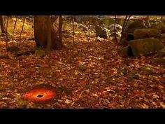 Andy Goldsworthy - environmental artist - YouTube