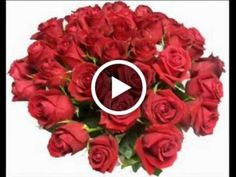 rooyklam - 0 results for holiday Birthday Greeting Message, Birthday Greetings, Happy Birthday Pictures, Happy Birthday Gifts, Red Rose Bouquet, Flowers Gif, Free To Use Images, Good Night Image, Christmas Pictures
