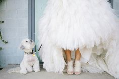 the pup approves. Photography by heatherhawkinsphoto.com, Floral Design by bowsandarrowsflowers.com
