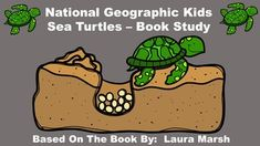 National Geographic Kids Sea Turtles - Book Study.  This pack includes:  an anticipation guide, review quiz, glossary, vocabulary review, table of contents activity, word cards, and writing paper.