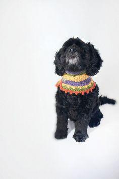gehäkelte Hippie Hunde Kragen/ Bandana  Bob von fraubOLZadesign, $45.00