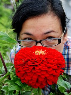 Does this Zinnia 'Benary's Giant Scarlet' make my head look too small?