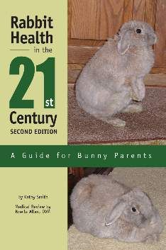 Rabbit Health in the 21st Century: A Guide for Bunny Parents (via @House Rabbit Network)