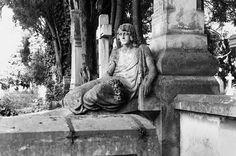 Angel de Piedra - Stone Angel
