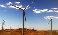 AMA gives wind farms clean bill of health and attacks 'misinformation'