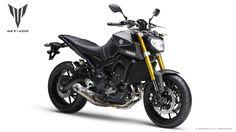 最近のヤマハ車で定番カラーのマットグレーも有ります。http://www.yamaha-motor.co.jp/mc/sportsbike/mt-09/img/color/color02_001zoom.jpg