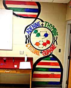 I painted this for a High School Biology classroom :-) DNA in Biology room photo 31714e24.jpg