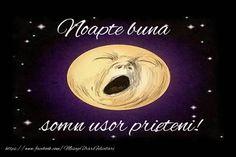 Noapte buna, somn usor prieteni!