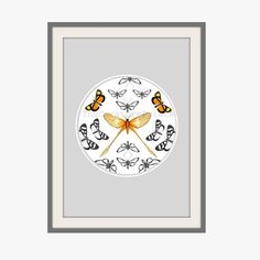 Vintage Butterflies 15 by 10.5 Art Print by TheCuratorsPrints